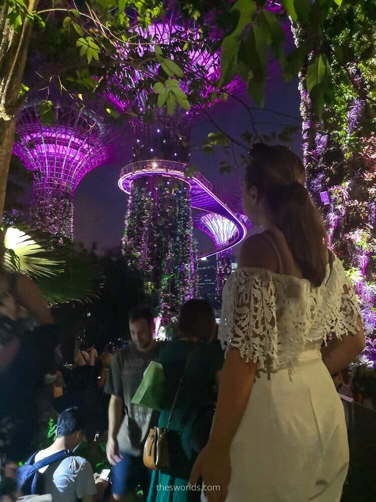 Girl looking at Supertree grove in Singapore