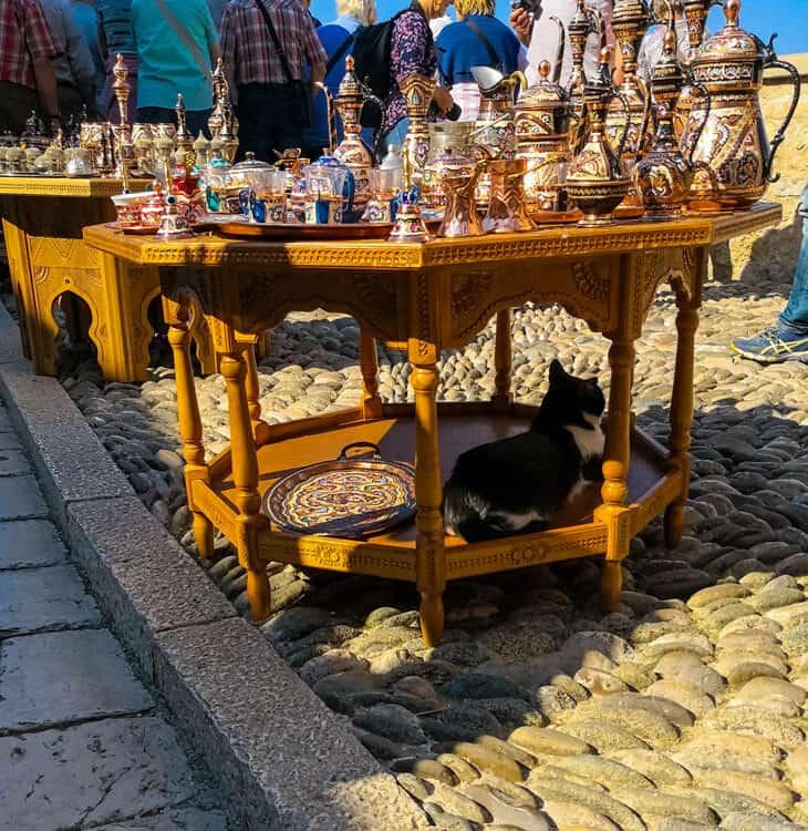 Black cat sitting in Mostar