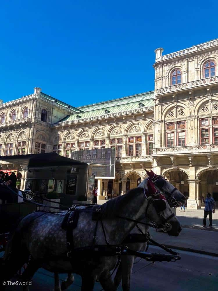 Horses in front of Vienna state opera in Vienna