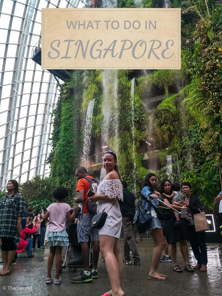 Girl standing in front of waterfall in Singapore
