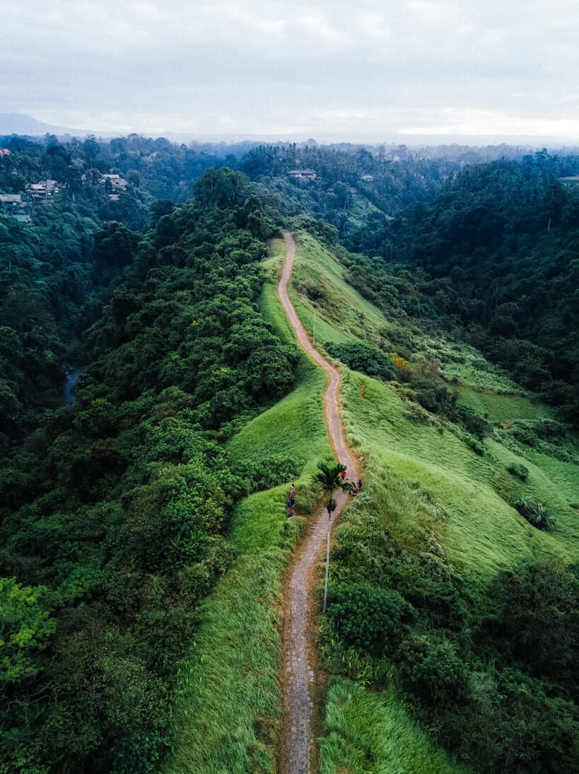 Aerial view of Campuhan ridge walk in Ubud