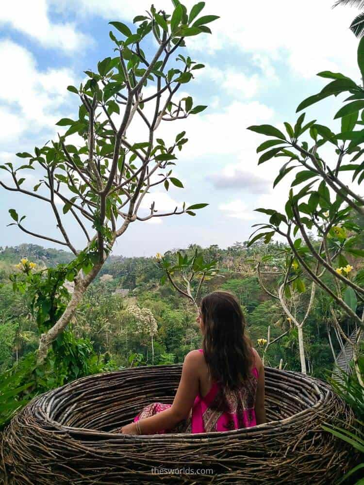 Girl sitting in a nest overlooking forest in Bali