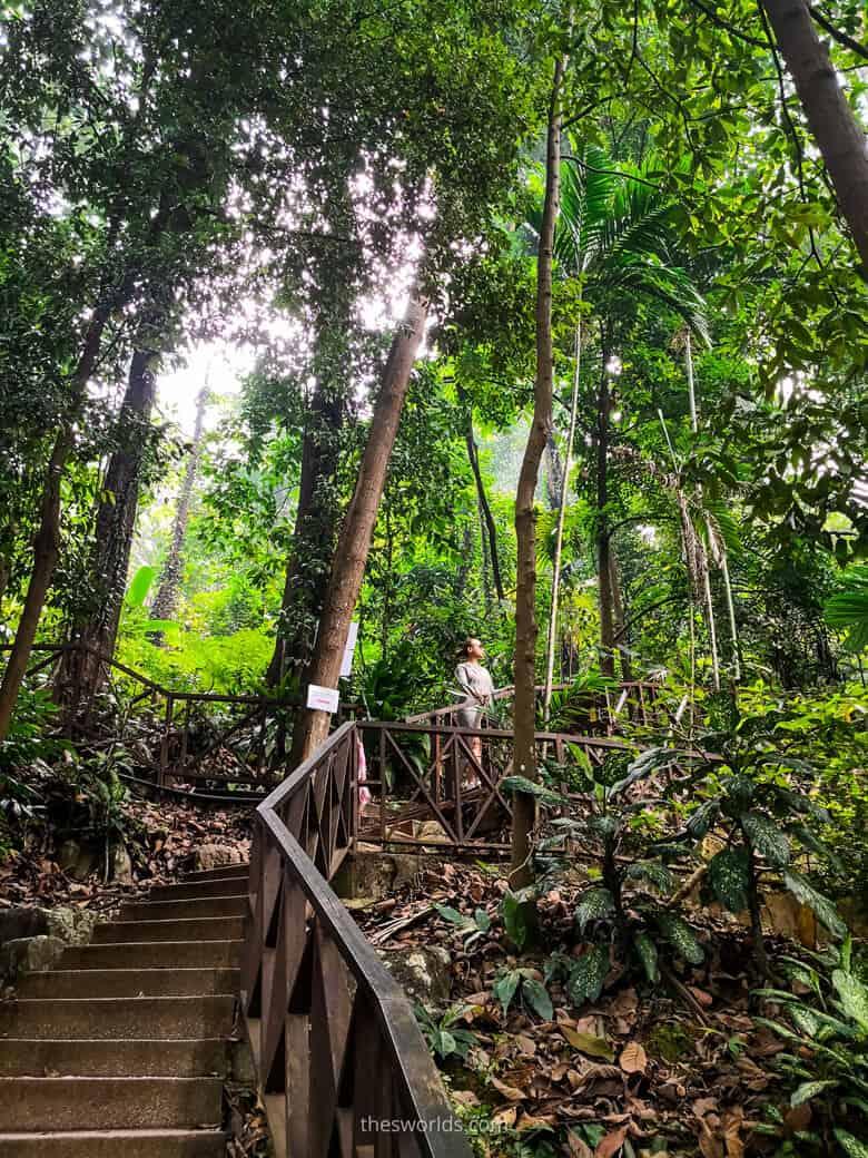 Girl posing at Eco forest Park Kuala Lumpur