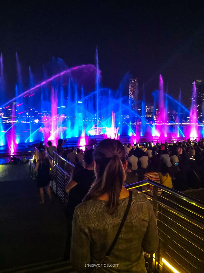 People looking at Night show in Singapore