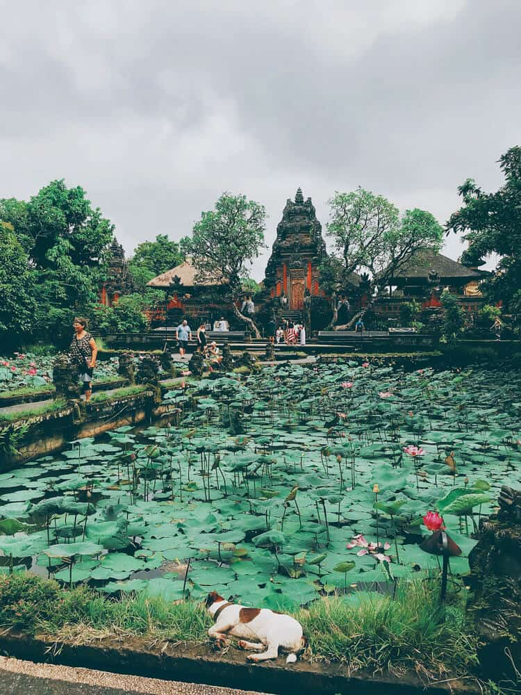 People standing at water temple Ubud