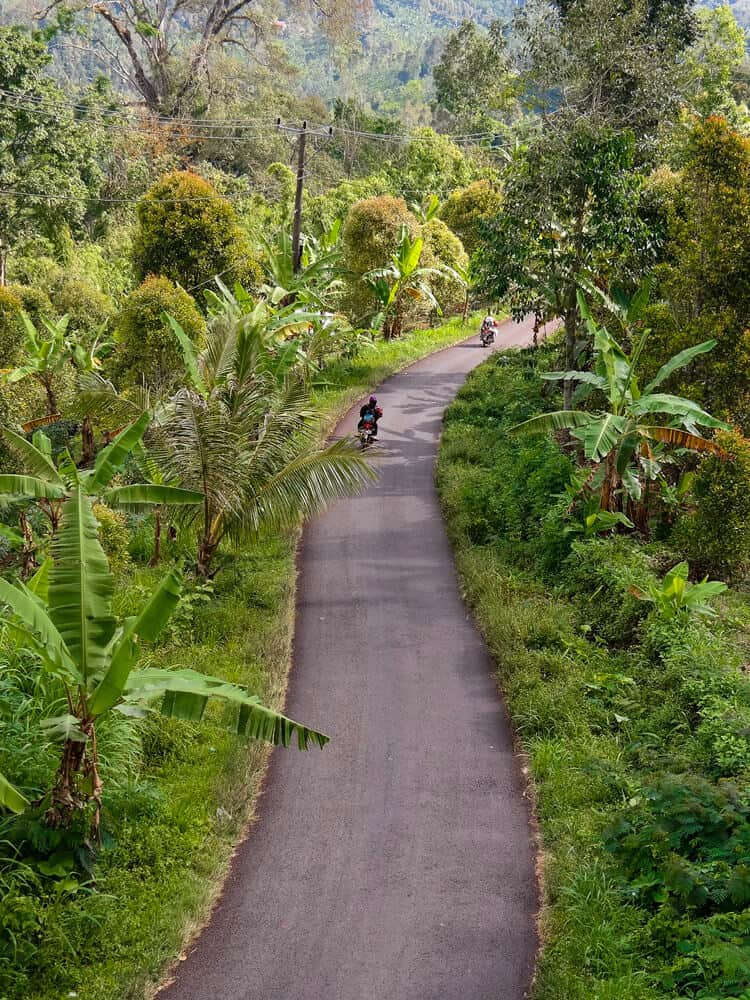 People driving on a road in the middle of forest at Bali