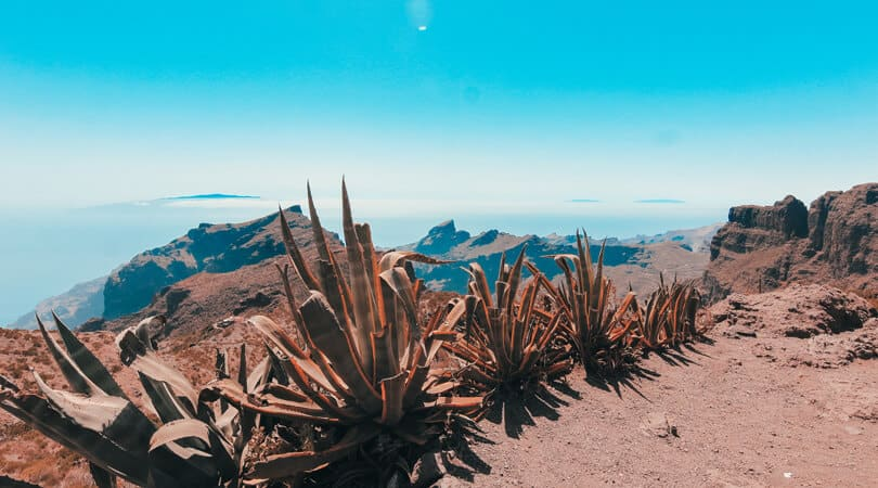 Canary Islands at Spain