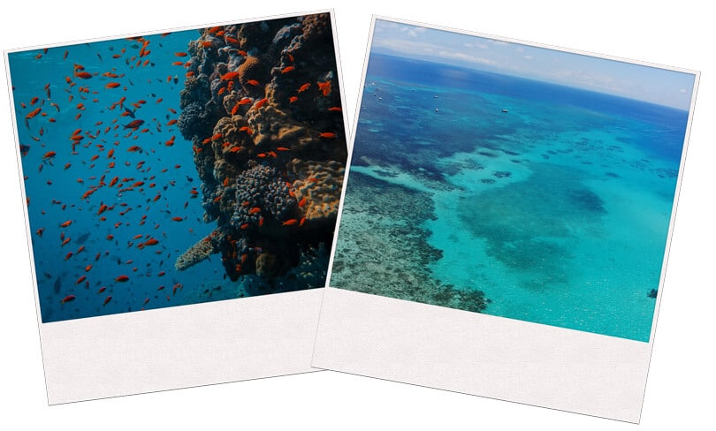 Two images of Great barrier reef in Australia
